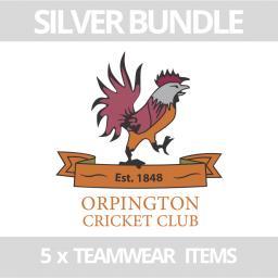 Silver Bundle LOGO Website  - Orp.png